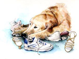 Golden in Trouble ~ illustration by Patrice for Dogs in Canada Magazine