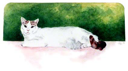 Sharon's Kitty ~ Watercolour by Patrice