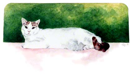 Sharon's Kitty ~ Painting by Patrice