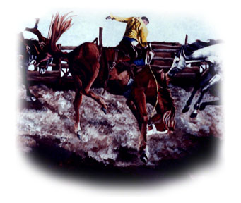 Bucking Horse ~ illustration by Patrice