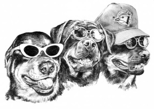 3 Rotties ~ Illustration by Patrice