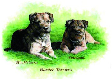 Border Terriers ~ illustration by Patrice