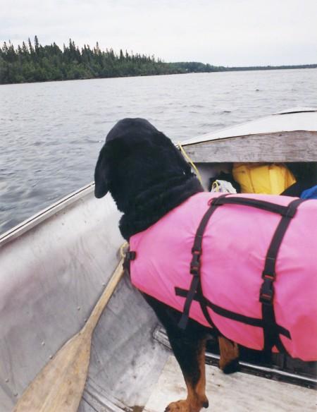 Monty boating ~ Photo by Patrice