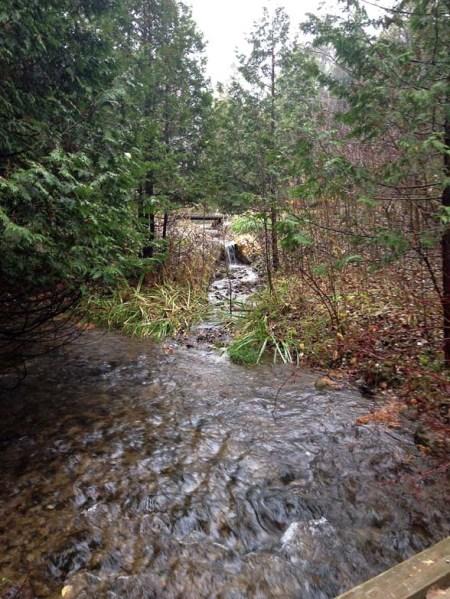 Rainy Waterfall ~ Photo by Patrice