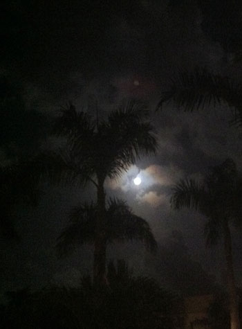 Night Sky ~ Photo by Patrice