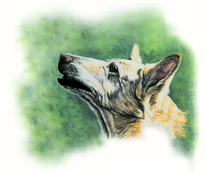 Love and Tenderness ~ Watercolour Art by Patrice