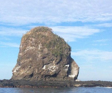 Monkey Head Rock in Costa Rica ~ Photo by Patrice