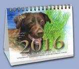 2016 Art & Affirmation Calendar