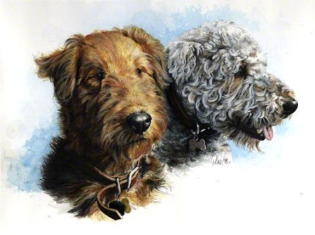 Connie's Airedales ~ Watercolour by Patrice