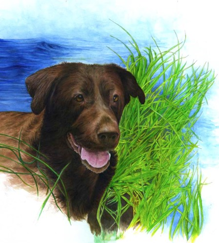 Zeke Painting ~ Watercolour by Patrice