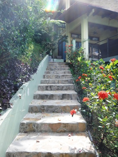 Stairs ~ Photo by Patrice
