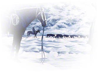 Horse and Cattle ~ Painting by Patrice