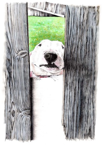 Parker2 Painting ~ Watercolour by Patrice