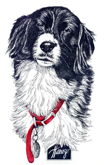 Henry ~ Pen and Ink Art by Patrice