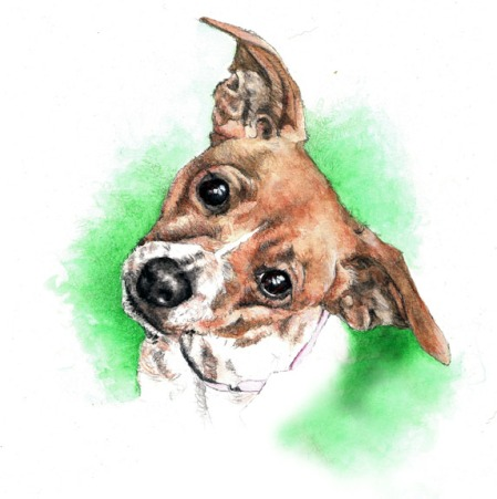 Foxy Painting ~ Watercolour Art by Patrice
