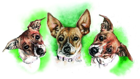 3 Faces of Foxy - Watercolour Painting by Patrice