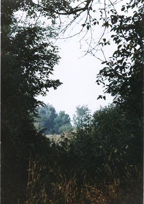 Farm view ~ Photo by Patrice