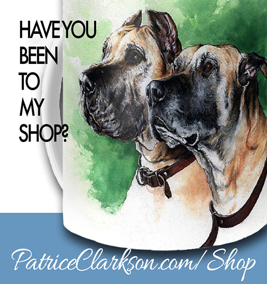 Have you been to my Shop?